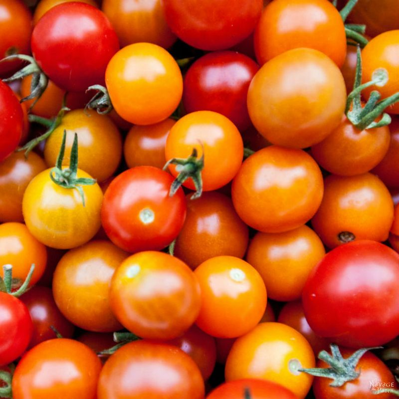 Cherry Tomato Soup   Cooking From Scratch   Organic Food   TheNavagePatch.com