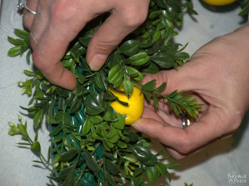 Adding lemons to wreath