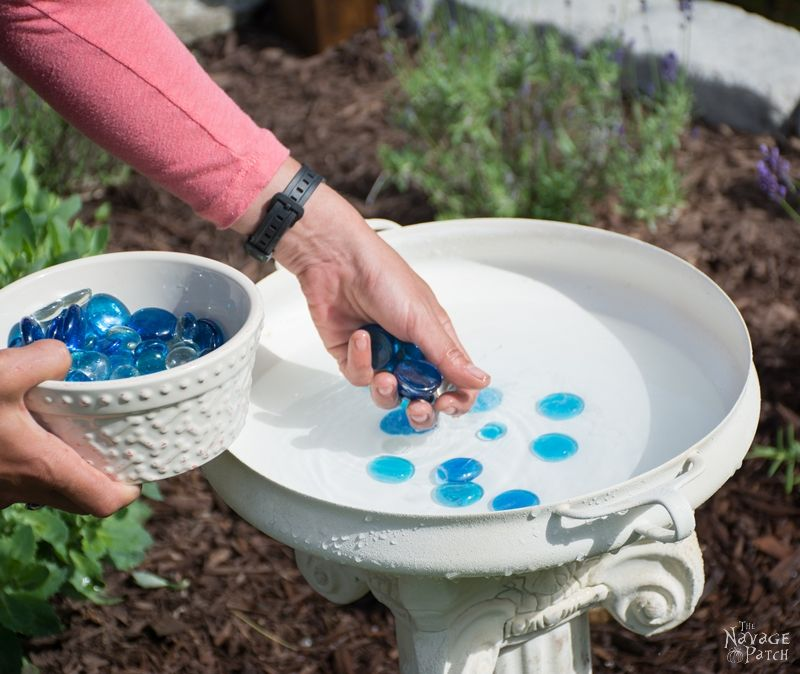 DIY Bird Bath | How to make a bird bath | How to keep your bird bath algae free | How to prevent algae growth | Simple upcycled garden and backyard decor | DIY garden and backyard decor | Homemade bird bath | #TheNavagePatch #Garden #DIY #Backyard #Upcycled #Repurposed | TheNavagePatch.com