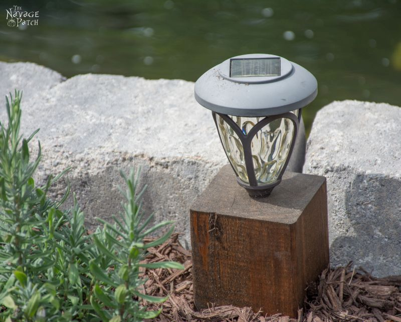 cedar cube solar landscape light in a garden