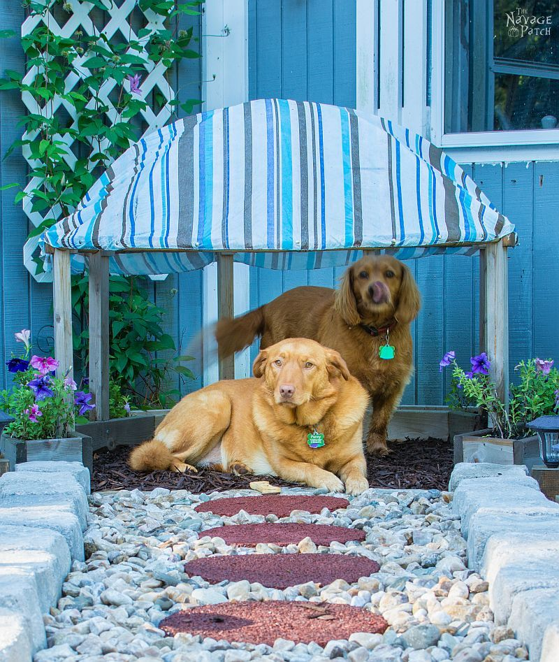 Papasan Dog Hut | Upcycling papasan chair to dog house | Simple woodworking & DIY | How to make a dog house with planters | TheNavagePatch.com