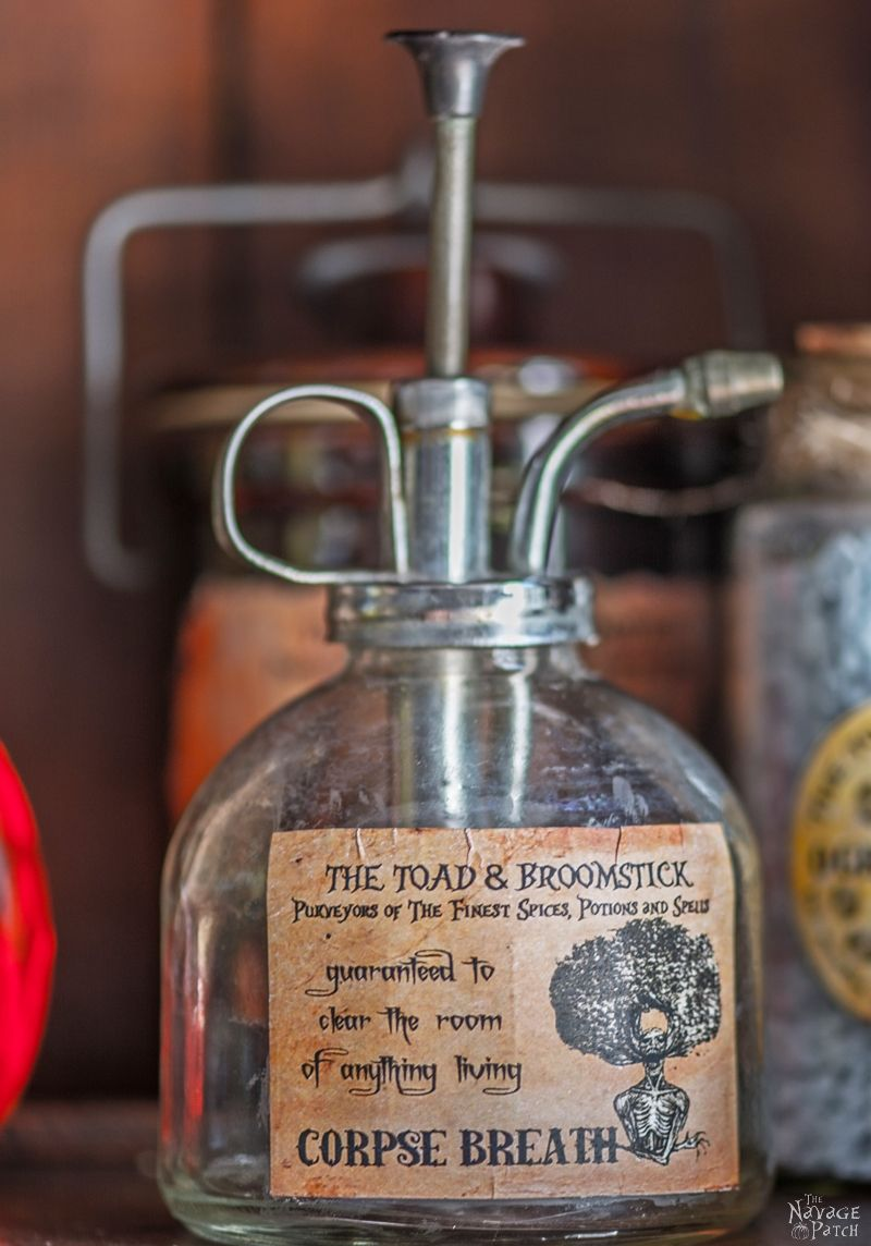 Halloween Apothecary Jars and Free Printable Labels | DIY potion bottle and spell books Halloween decor | Harry Potter theme Halloween decor ideas | Free printable labels for apothecary jars | DIY apothecary jars with Dollar store supplies | Spooky and fun witches kitchen ideas | #TheNavagePatch #Halloween #diy #easydiy #potionbottle #potion #halloweedecor # halloweenparty #dollarstore #dollartree #upcycle #repurposed #HarryPotter | TheNavagePatch.com