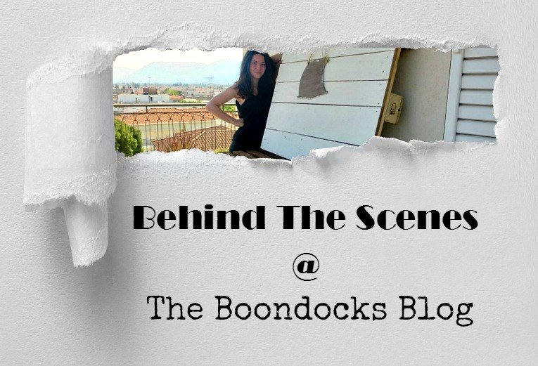 Behind the Scenes at The Boondocks Blog