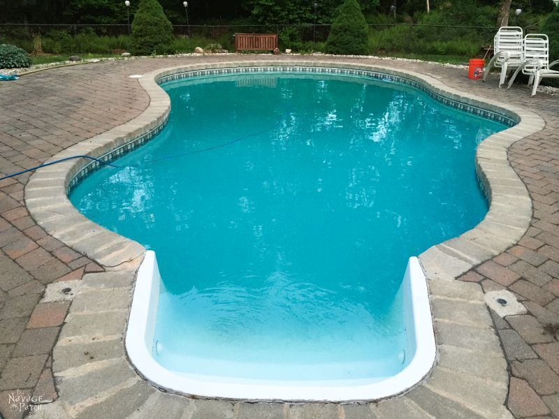 Pool Blues (and Greens) - The Navage Yaps | Pool Life | Pool Ownership | Dirty Pool | TheNavagePatch.com