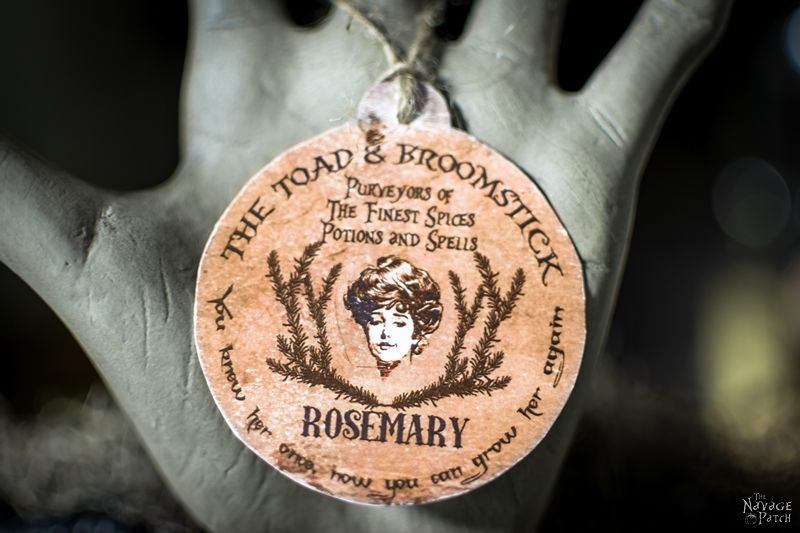 Potted Rosemary {Potted Hand Halloween Prop} | DIY Halloween prop | How to turn anything in to rusty old iron | How to rust a ceramic pot | Spooky and gothic DIY Halloween hand topiary | Easy and budget friendly DIY Halloween decoration | Dollar store crafts | TheNavagePatch.com