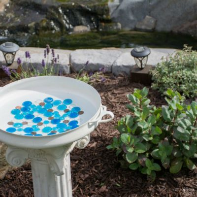 DIY Bird Bath | How to make a bird bath | How to keep your bird bath algae free | How to prevent algae growth | Simple upcycled garden and backyard decor | DIY garden and backyard decor | Homemade bird bath | #Garden #DIY #Backyard #TheNavagePatch | TheNavagePatch.com