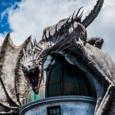 The Navages' Universal Studios & Disney Holiday