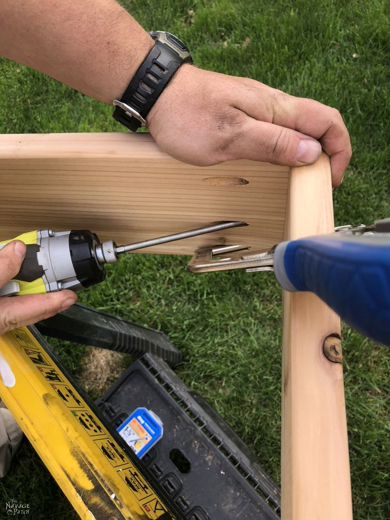 screwing together two cedar boards