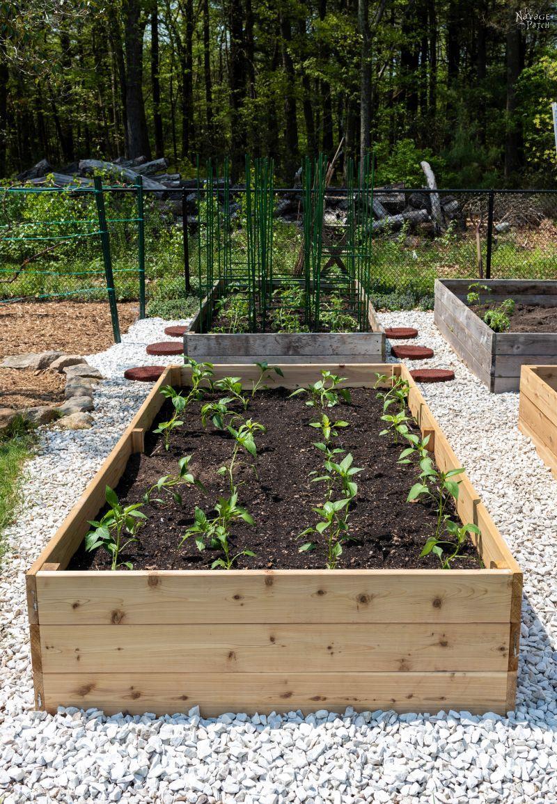 DIY Raised Garden Beds Tutorial - The Navage Patch