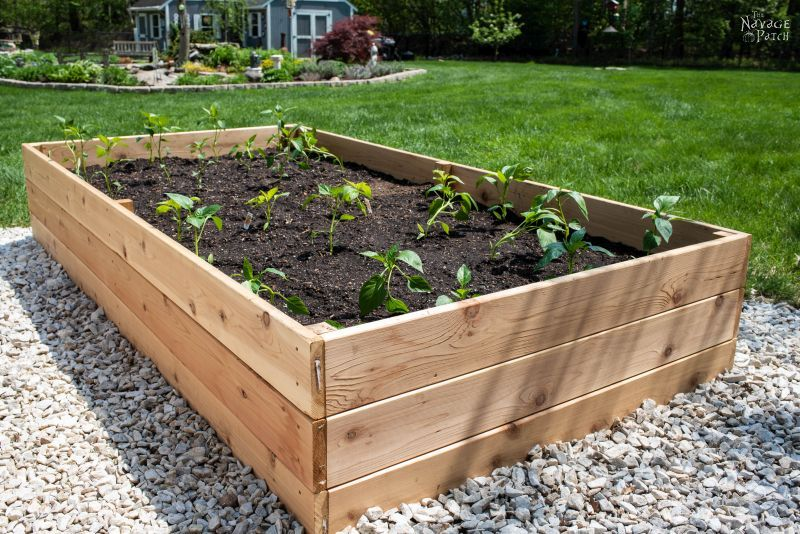 garden diy build rainbow gardens amazing raised beds piece bed wood a of