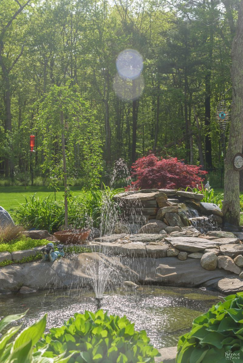 The Pond Project – Two Years Later | DIY pond and backyard makeover | DIY Pond and garden landscaping ideas | Tips on landscaping a lush garden | Plants that work great in pond landscaping | Almost no-maintenance plants for your sun garden | How to easily maintain a pond | What to plant around a pond | Pond and backyard reveal | #TheNavagePatch #DIY #Pond #Landscaping #Garden #HowTo | TheNavagePatch.com