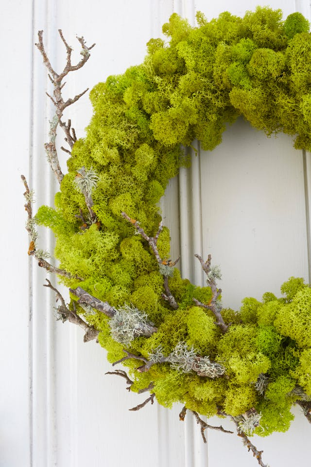 DIY Moss Wreath by Apartment Therapy