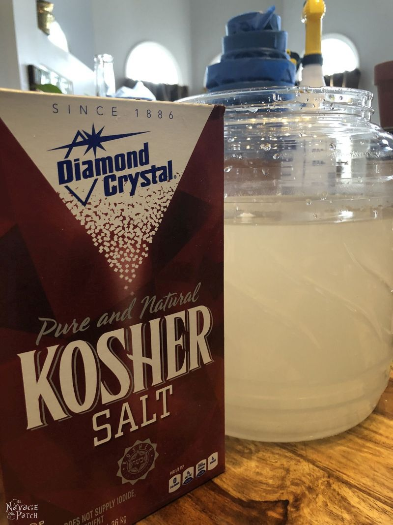 kosher salt box next to container of brine