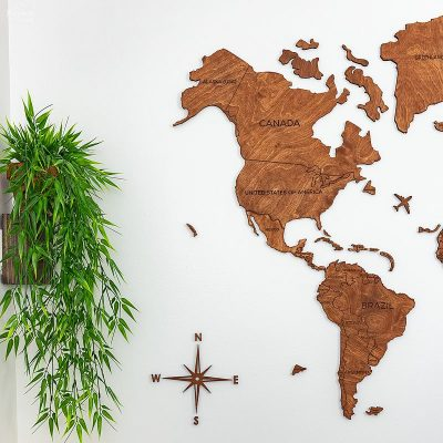 Wooden world map on wall next to green plant