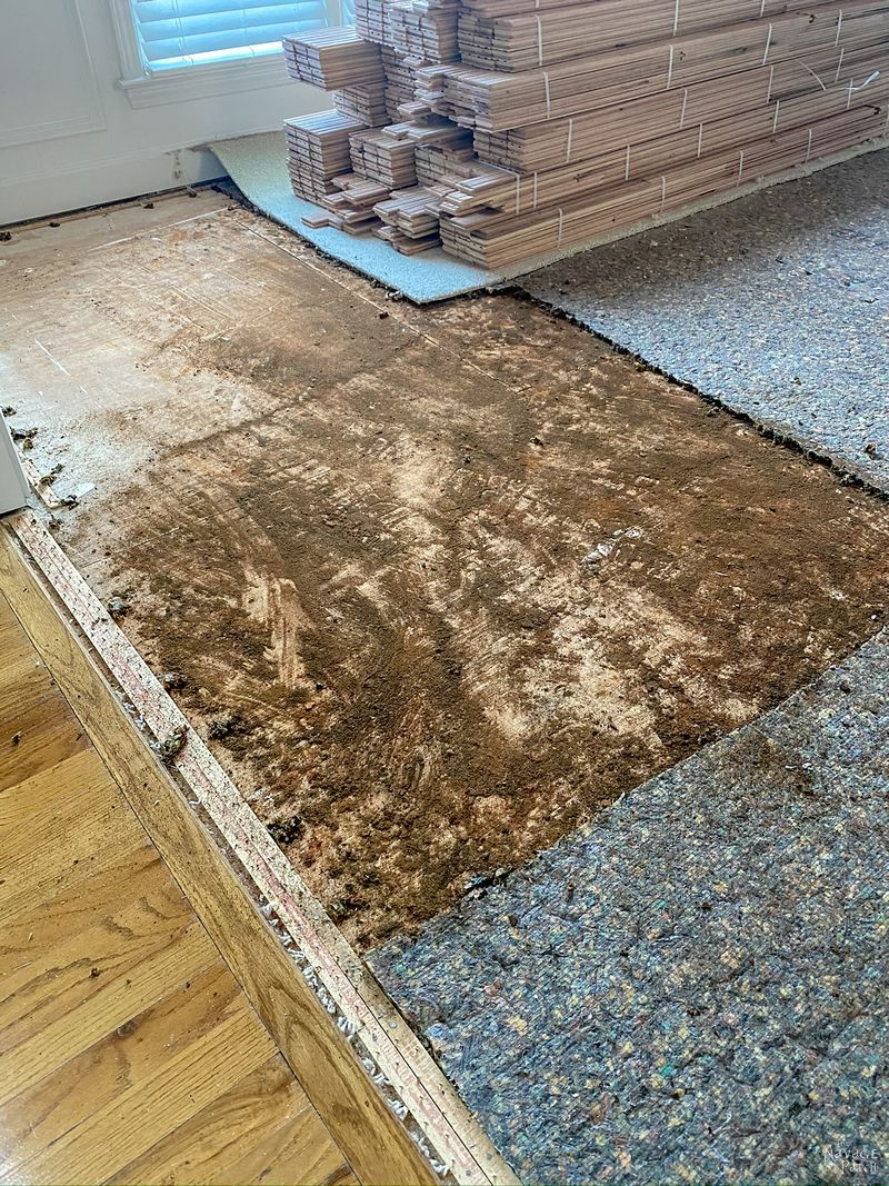 rot and dirt under a carpet being removed